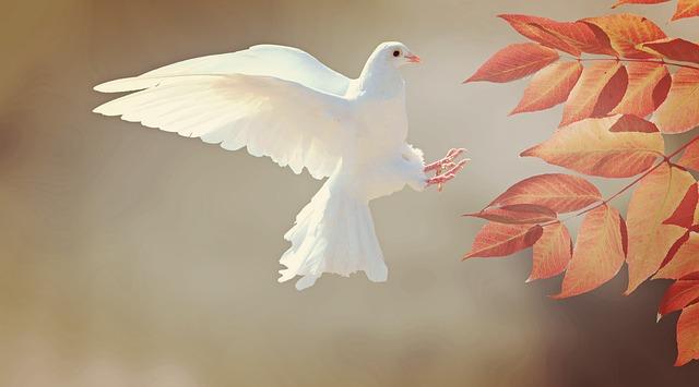คำไวพจน์ นก